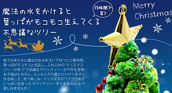 クリスマスツリー マジックツリー 『マジッククリスマスツリー』 12時間で育つ不思議なクリスマスツリー